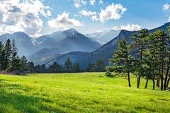 Prato in Rocky Mountain National Park fotografie stock libere da diritti
