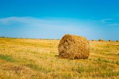 Prato rurale del campo del paesaggio con Hay Bale After Harvest in Sunn Fotografie Stock Libere da Diritti