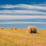 Prato rurale del campo del paesaggio con Hay Bales After Immagine Stock Libera da Diritti