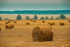 Prato rurale del campo del paesaggio con le balle di fieno dopo il raccolto fotografie stock