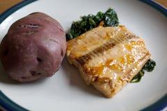 Prato Salmon vitrificado abricó Imagem de Stock Royalty Free
