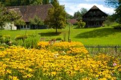 Prato scenico in Ballenberg, Svizzera Fotografia Stock Libera da Diritti