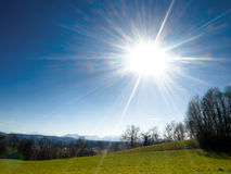 Prato sotto il sole della sorgente Fotografia Stock Libera da Diritti