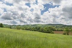 Prato su un fondo del giorno di estate nuvoloso delle colline Immagini Stock Libere da Diritti