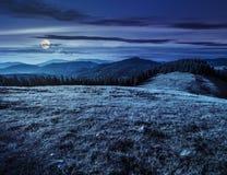 Prato su un pendio di collina vicino alla foresta alla notte Immagini Stock