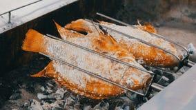 Prato tailandês nacional, peixes fritados no cuspe no sal e com verdes Alimento exótico de Tailândia e de Ásia filme