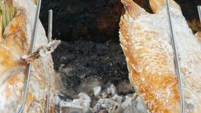 Prato tailandês nacional, peixes fritados no cuspe no sal e com verdes perto acima da vista Alimento exótico de Tailândia e de Ás video estoque
