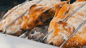 Prato tailandês nacional, peixes fritados no cuspe no sal e com verdes perto acima da vista Alimento exótico de Tailândia e de Ás filme