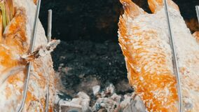 Prato tailandês nacional, peixes fritados no cuspe no sal e com verdes perto acima da vista Alimento exótico de Tailândia e de Ás vídeos de arquivo