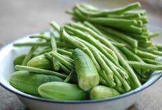 Prato vegetal verde imagens de stock
