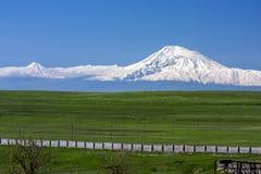 Prato verde davanti alla montagna nuvolosa dell'Ararat in Armenia Fotografie Stock