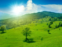 Prato verde fantastico in montagna Fotografia Stock