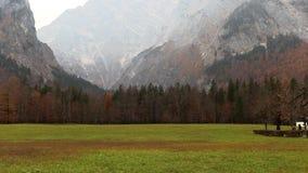 Prato verde fra le montagne stock footage