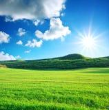 Prato verde in montagna Fotografia Stock Libera da Diritti
