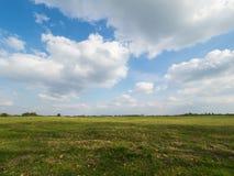Prato verde nella primavera e cielo blu con le grandi nuvole Fotografia Stock Libera da Diritti
