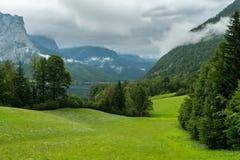 Prato verde nelle alpi un giorno nuvoloso Immagine Stock