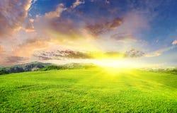 Prato verde sul tramonto Fotografia Stock