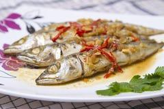 Pratos de peixes Fotografia de Stock