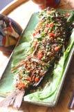Pratos de peixes quentes Fotografia de Stock