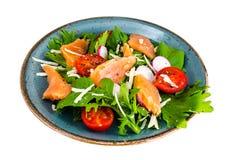 Pratos de peixes Salada com salmões Imagem de Stock