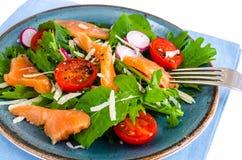 Pratos de peixes Salada com salmões Fotos de Stock