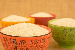 Pratos do arroz Imagens de Stock
