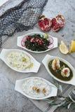 Pratos turcos do meze foto de stock