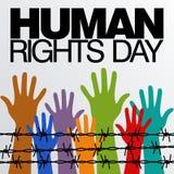 Prawa Człowieka dnia wektoru szablon Obrazy Royalty Free