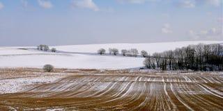 prawdziwa ostrej zimy panoramy Fotografia Royalty Free