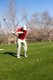prawdziwy golfiarz Zdjęcie Royalty Free