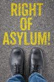 Prawica azyl fotografia royalty free