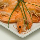 Prawn appetizer plate Royalty Free Stock Photo