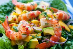 Prawn, avocado and mango salad stock photo