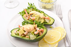 Prawn and Avocado Salad Royalty Free Stock Photo