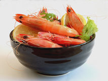 Prawn Bowl #2 Stock Photos