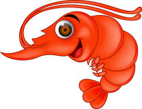 Prawn cartoon Royalty Free Stock Photo