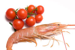 Prawn And Cherry Tomatoes stock photography