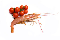Prawn And Cherry Tomatoes Royalty Free Stock Photography