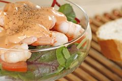 Prawn cocktail close up. Clse up fresh king prawn cocktail with salad and dressing Stock Image