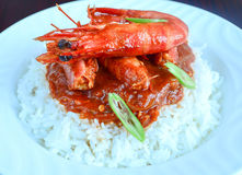 Prawn Curry Royalty Free Stock Images