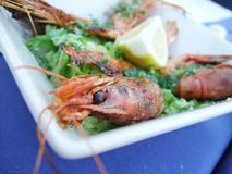 Prawn Delicacy Royalty Free Stock Photos