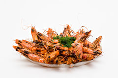 Prawn Dish. With parsley on white royalty free stock images
