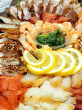 Prawn, fish slices assortment on Party plate Stock Image