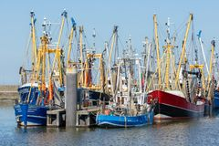Prawn fishing boats in Dutch harbor Lauwersoog royalty free stock photo
