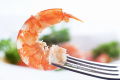 Prawn on fork. Food background Stock Photo