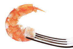 Prawn on fork. (isolated). Food background Royalty Free Stock Images