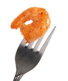 Prawn on fork Stock Image