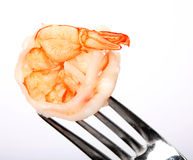 Prawn on a fork Royalty Free Stock Photos