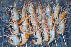 Prawn grill Royalty Free Stock Photography