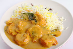 Prawn korma. A prawn korma curry served with pilau rice Royalty Free Stock Image